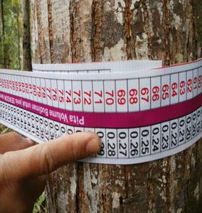 Measuring standing tree volume by using a volume tape